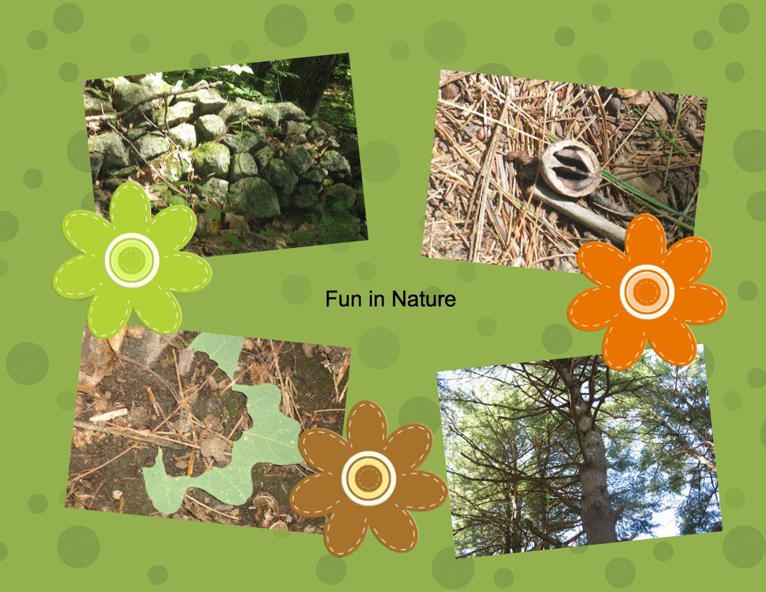 Nature clipart nature walk #7