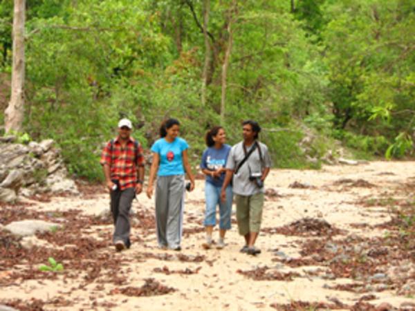 Nature clipart nature walk #11