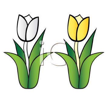 Nature clipart spring flower #12