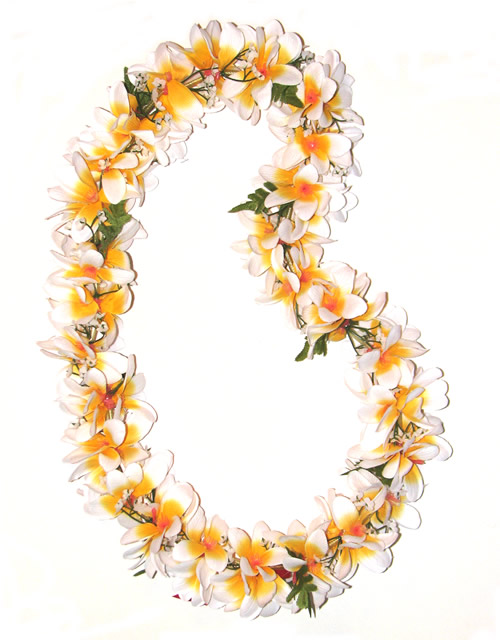 Necklace clipart lei #10