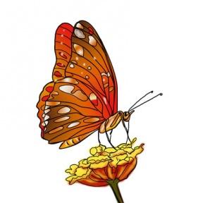 Nectar clipart Cliparts Zone Milkweed Cliparts Nectar