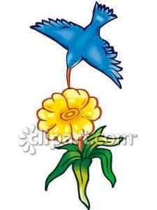 Nectar clipart Hummingbird Clipart Free Clipart Free