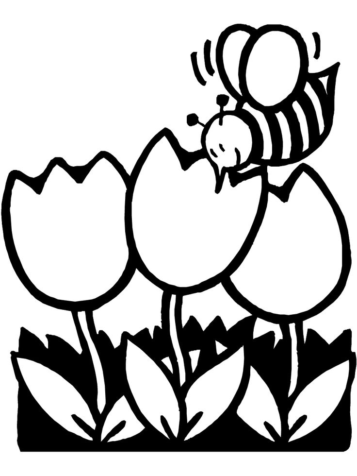 Nectar clipart spring Pages about pages images Spring