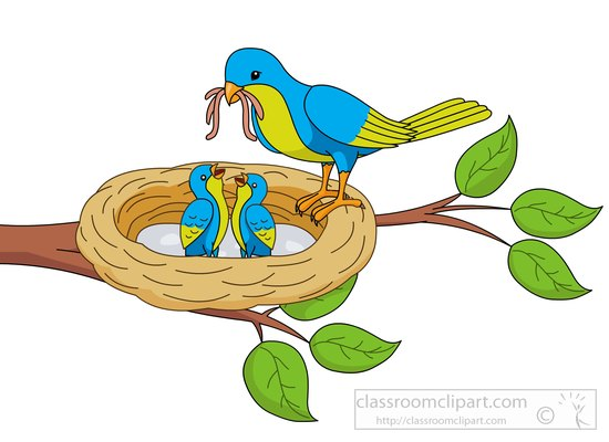 Bird clipart mother and baby 58KB in clipart Clipart nest