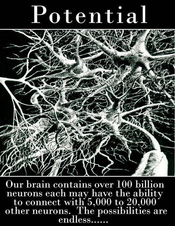 Neuron clipart psychology brain Pinterest Brain Brain necklace on