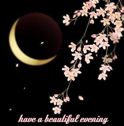 Evening** clip Pinterest Good 228