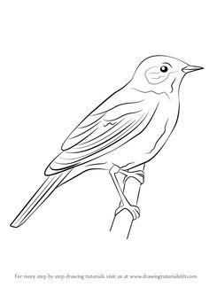 Brds clipart nightingale Nightingale Tattoo bird Nightingale tattoo