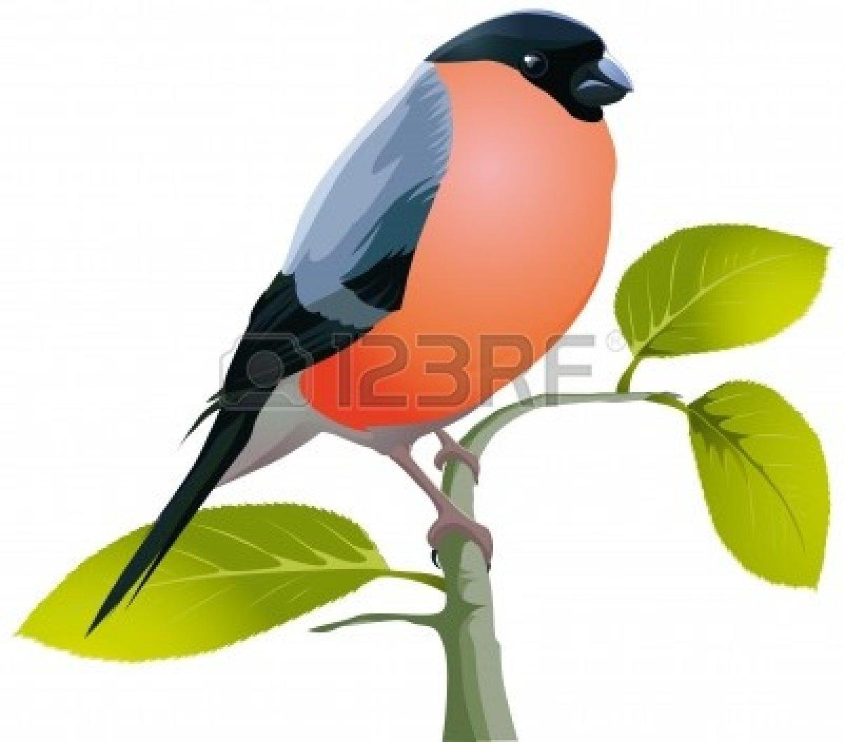 Nightingale clipart maya bird Free Nightingale Clip Images Art