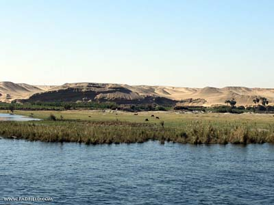Nile River clipart ancient egypt  Moses River Photographs Free