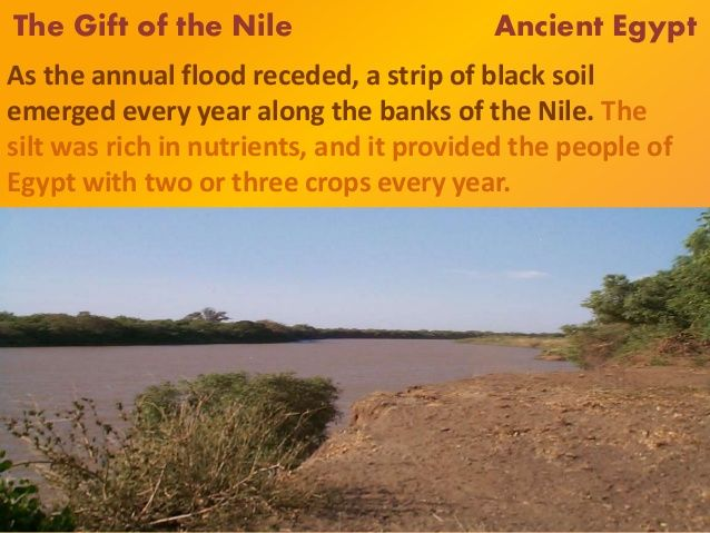 Nile River clipart vegetation map River Search nile Google on