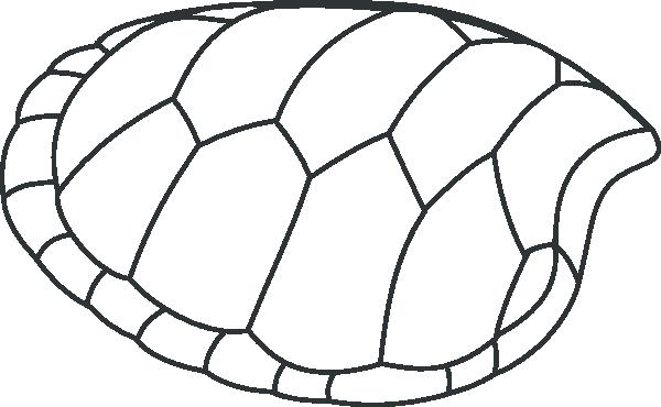 Turtoise clipart simple #10