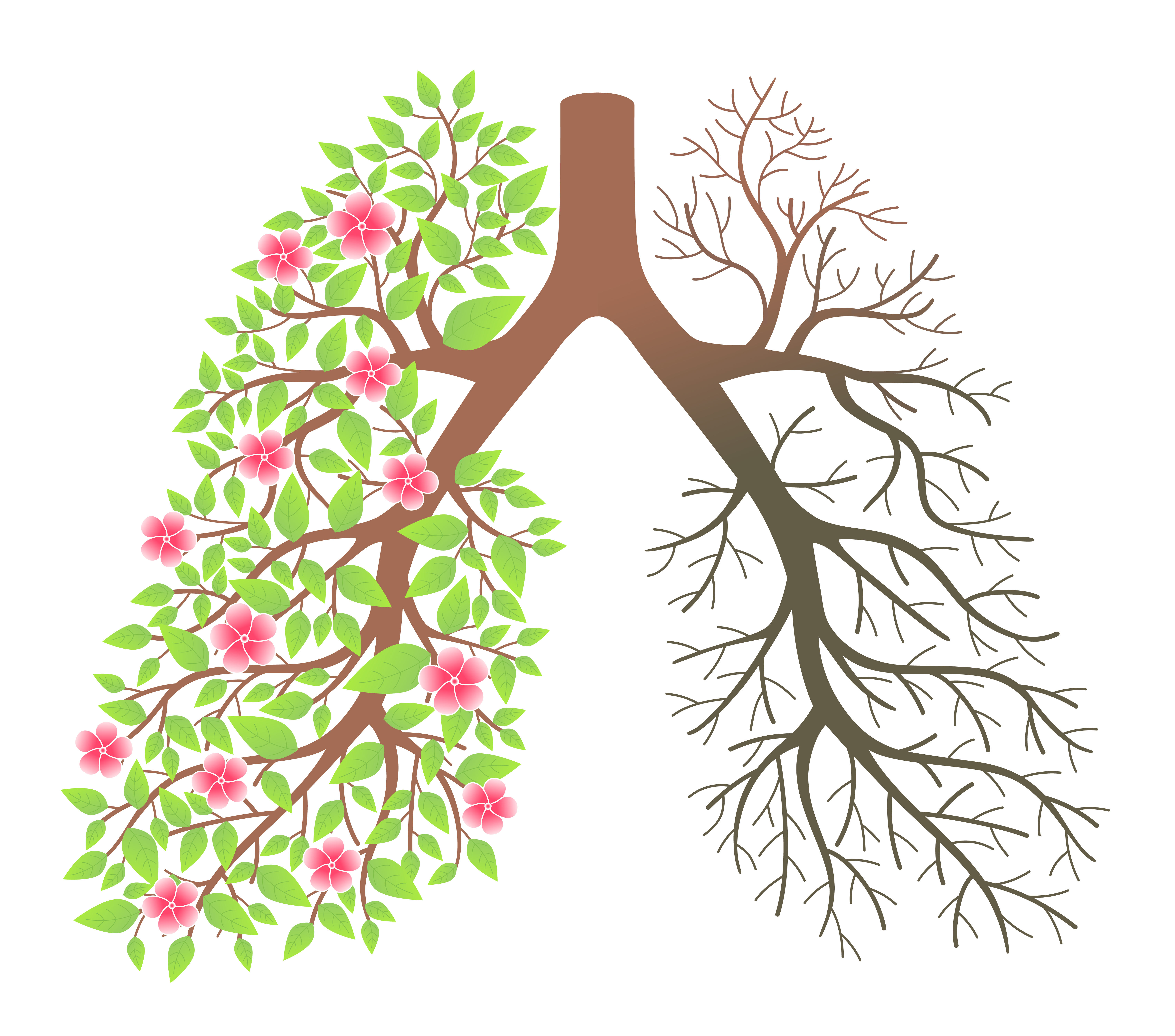 No Smoking clipart copd Who disease disease don't COPD