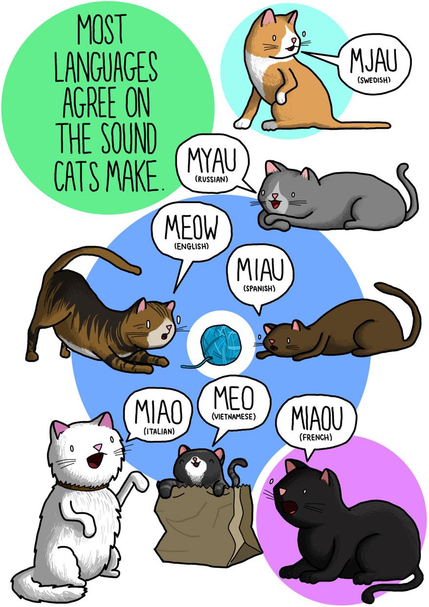 Saying clipart animal sounds #1