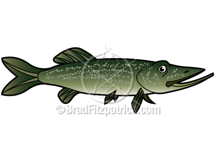 Northern Pike clipart  Northern Clipart Character Licensing