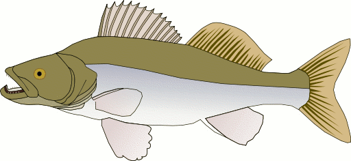 Anglerfish clipart green fish Free Domain Pike of page