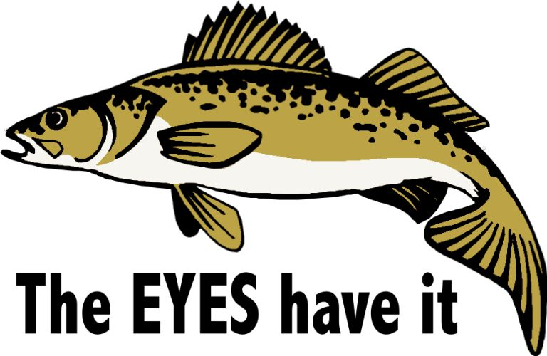 Northern Pike clipart cartoon #3