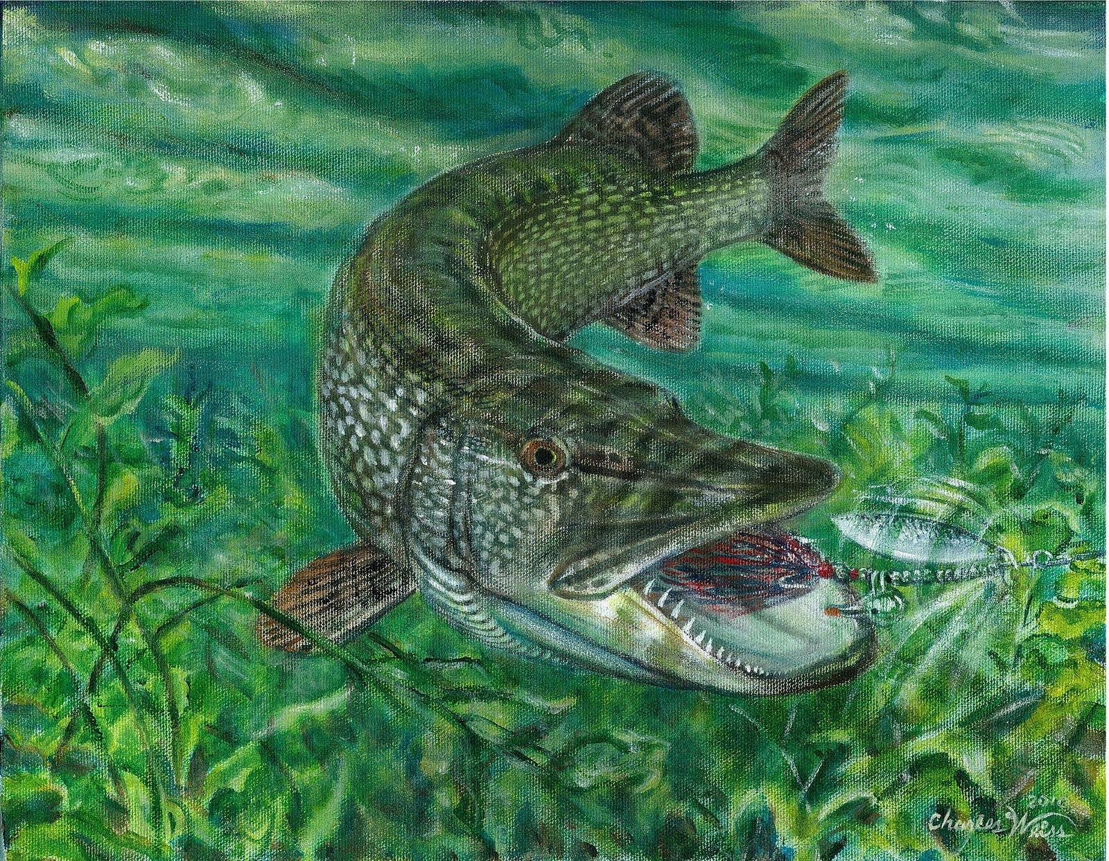 Northern Pike clipart great northern #3
