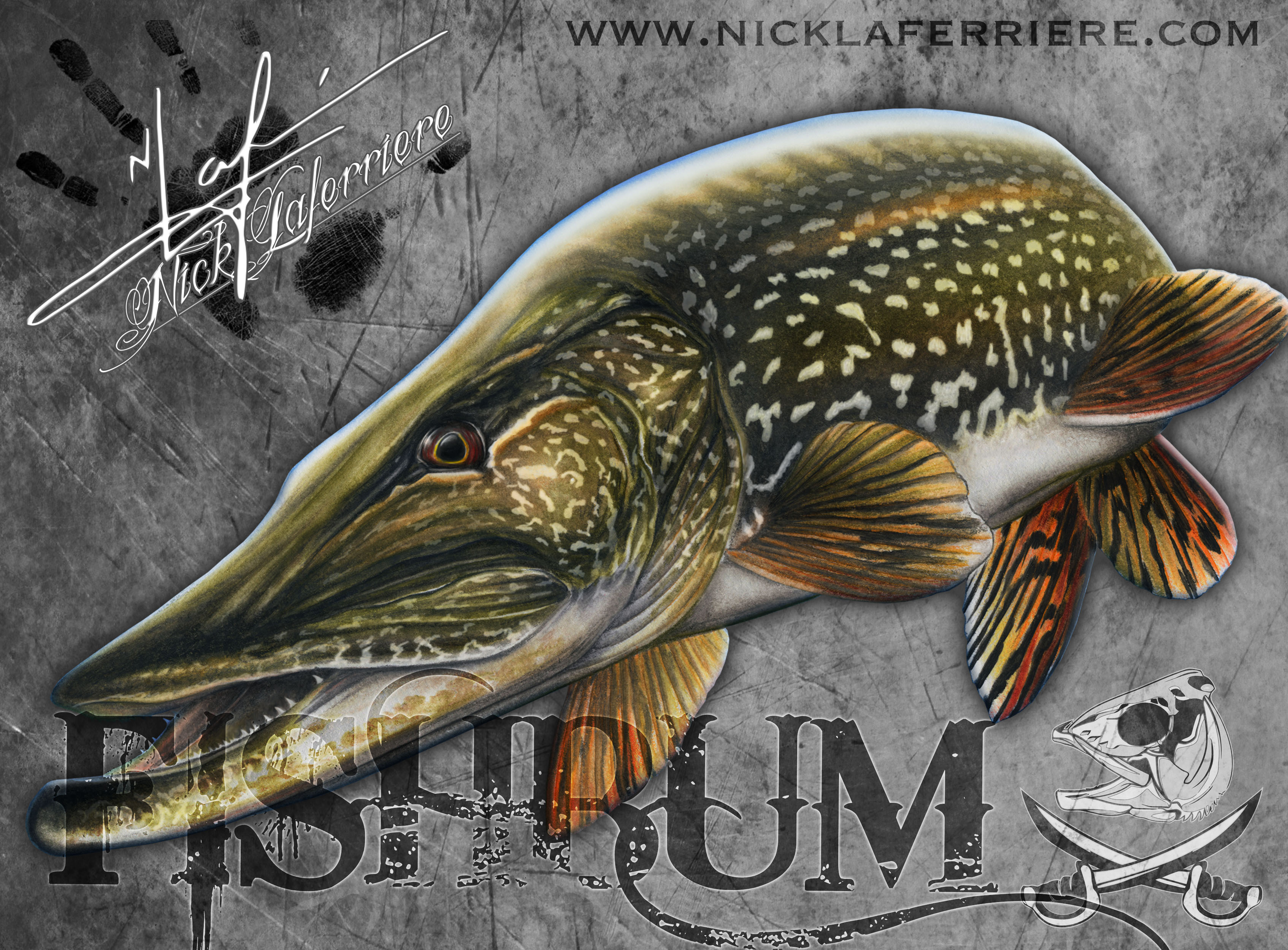 Northern Pike clipart norther #10