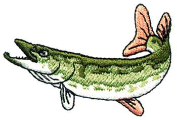 Northern Pike clipart norther #2