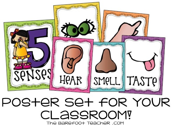 Notebook clipart five Notebooks: classroom notebook Senses to