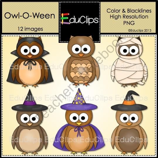 Notebook clipart five Images Owl School  Educlips