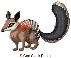 Numbat clipart Quail Clipart Illustration Illustrations and numbat 74