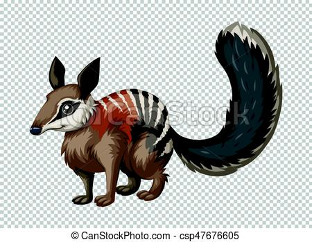 Numbat clipart Quail Clipart Vector of Wild numbat on