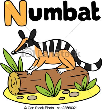 Numbat clipart Quail Clipart Csp23560021 Illustration of for numbat