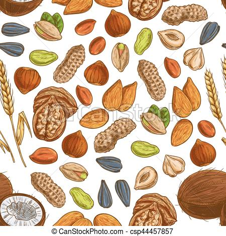 Nut clipart Pattern and bean seed Clipart