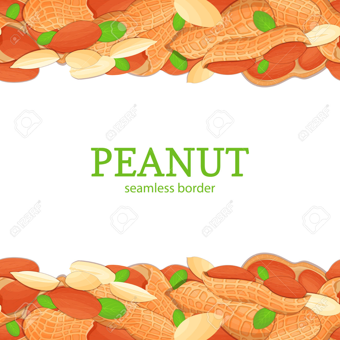 Nut clipart peanut shell Sea Clipart nut  Collection
