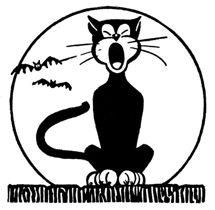 Images Cat Retro Try Clip