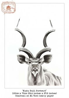 Oil Lamp clipart kudu Illustration Greater ribcage one Tattoo