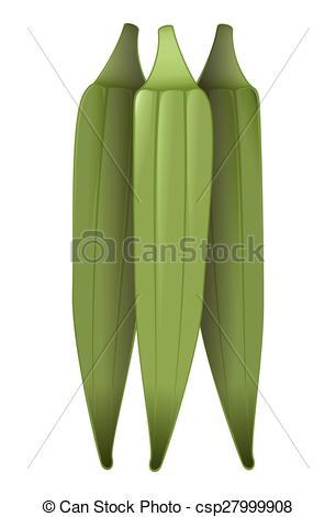 Okra clipart green  green of A fresh
