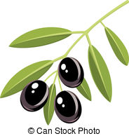 Olive clipart Olive Olive Illustrations Stock 183