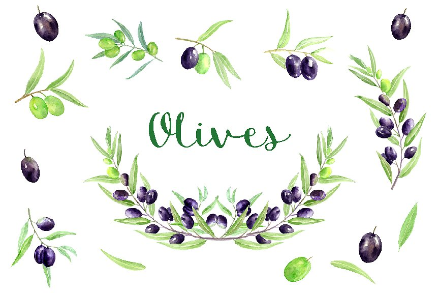Olive clipart border Illustrations ~ Market on Clipart