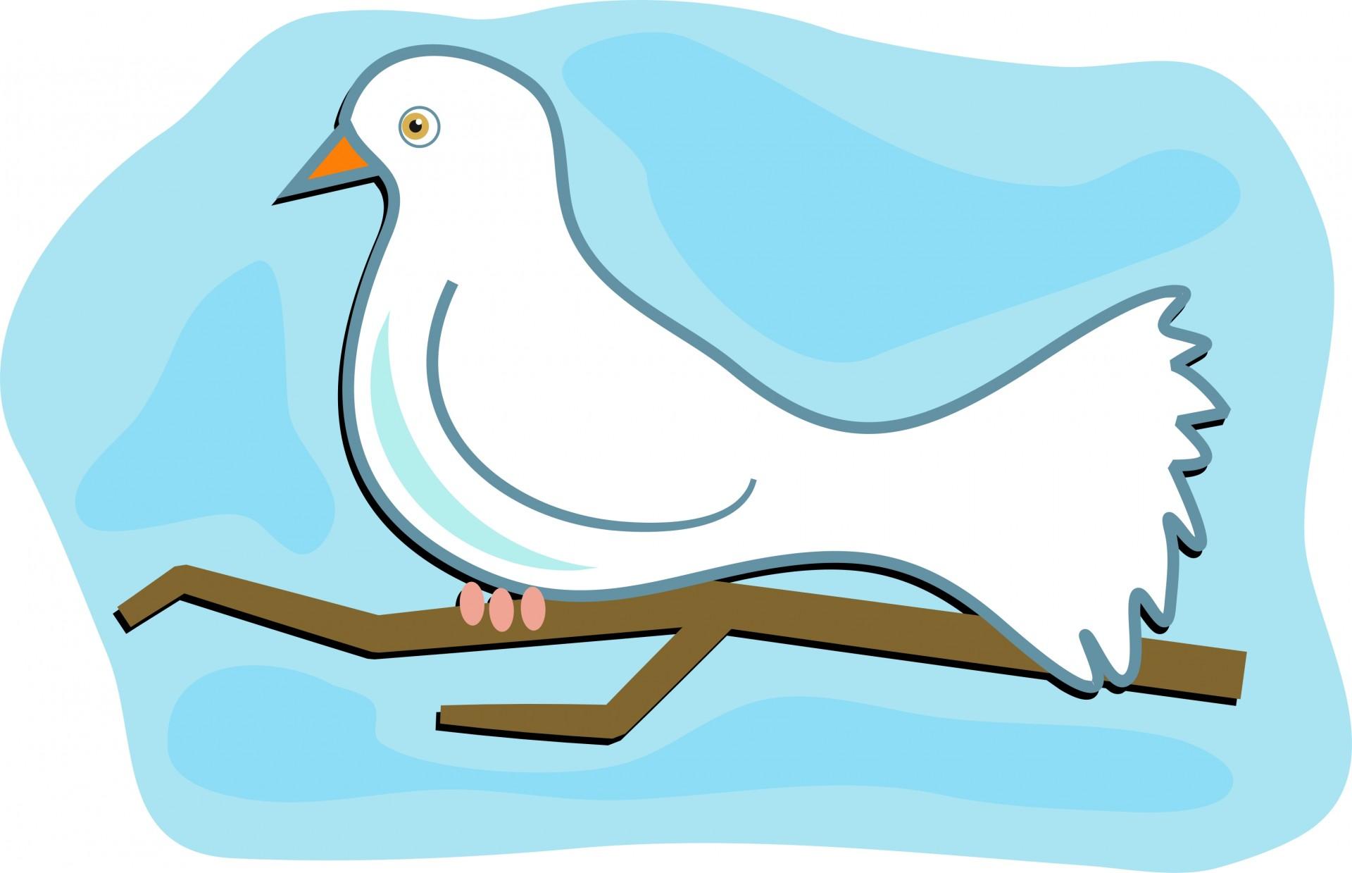 Turtle Dove clipart dove bird #4