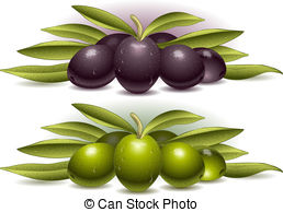 Olive clipart greek olive Pictures royalty  Images composition