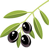 Olive clipart greek olive Of Royalty · olives Black