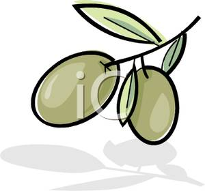 Olive clipart green olive Olives Branch Growing on on