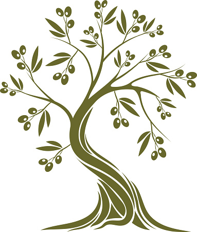 Texture clipart olive tree #1