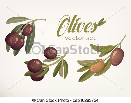 Olive clipart mediterranean food  berries with ripe of