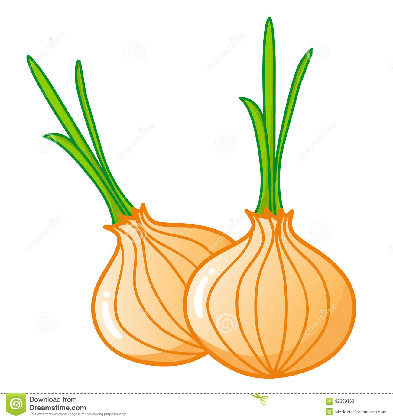 Onion clipart Images Clipart Free Panda Clipart