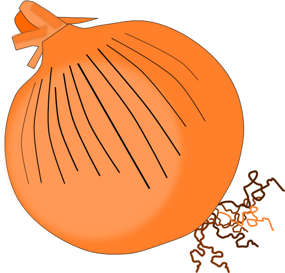 Onion clipart You because can Use use