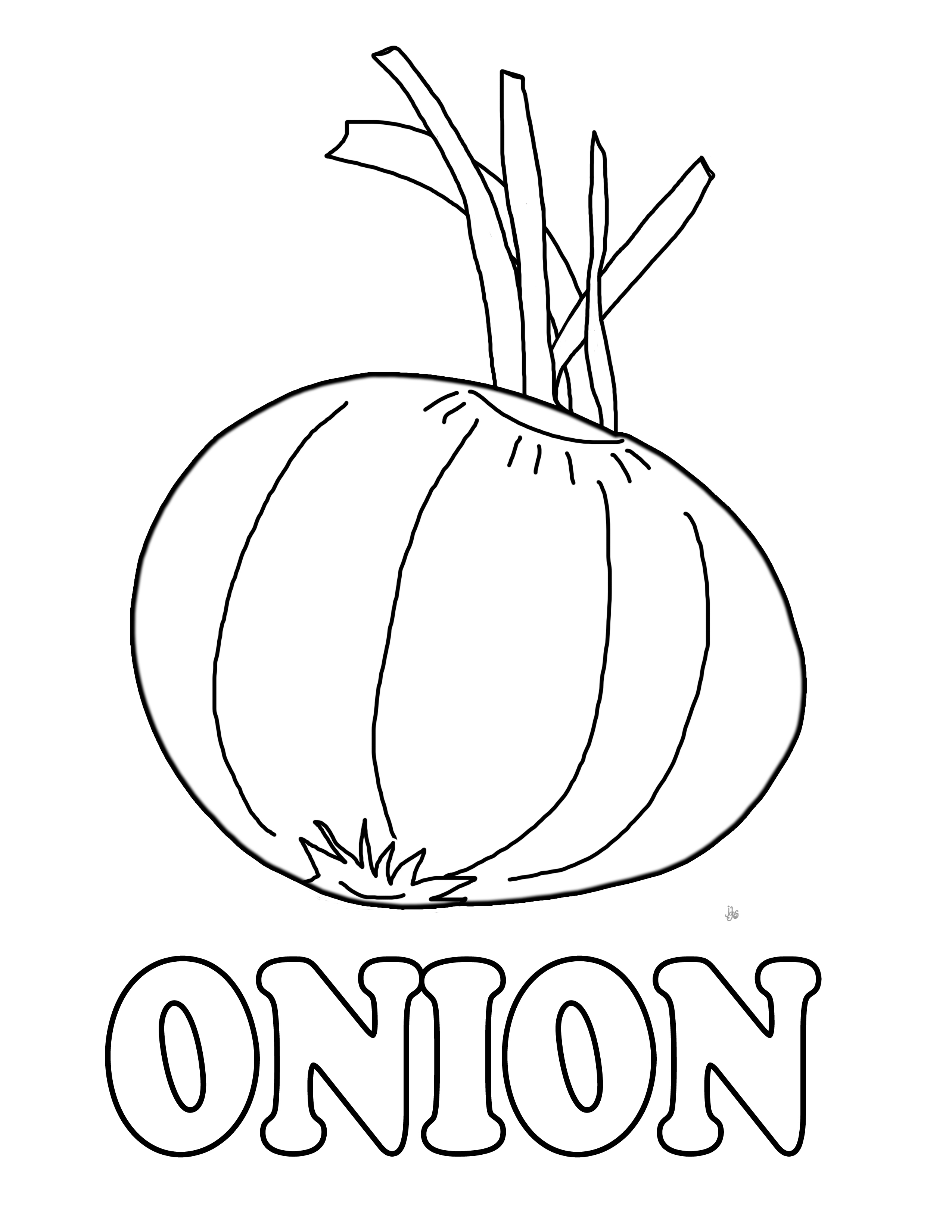 Onion clipart coloring page Textures Free an Pages onion