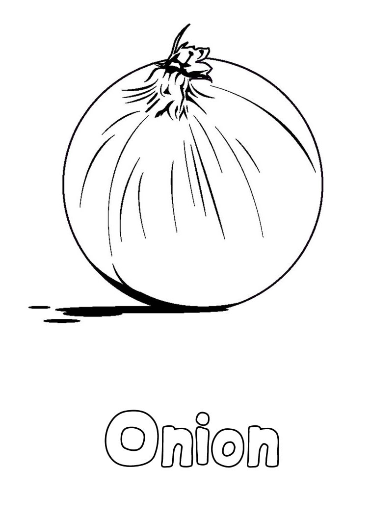 Onion clipart coloring page Of Educational as Pages