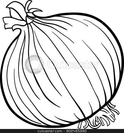 Onion clipart coloring page And vegetable vector White clipart