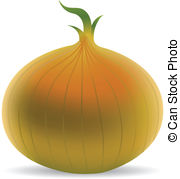 Onion clipart yellow  isolated Illustrations and Clipart