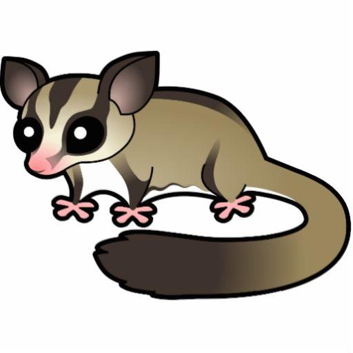Possum clipart opossum #4