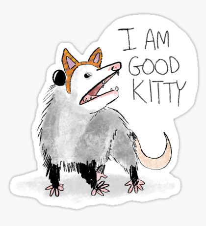 Opossum clipart length Ideas Best Possum: on Opossum
