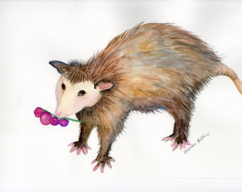 Opossum clipart length Original painting Etsy painting with